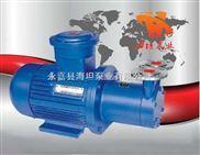 上海厂家生产 CWB型磁力驱动旋涡泵价格