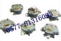 BJH防爆接线盒 增安型 铝合金材质 一通二通三通四通 防爆接线盒