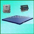 江苏防爆电子地磅,江苏电子磅秤厂家,江苏电子小地磅价格