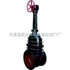 伞齿轮铸铁闸阀Z541T-10