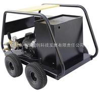 电加热高温高压清洗机DH170E24/12KW