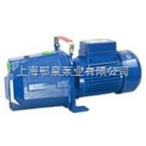 小型自吸喷射泵