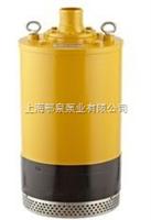 QXN小型高扬程潜水泵