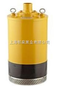 小型高扬程潜水泵