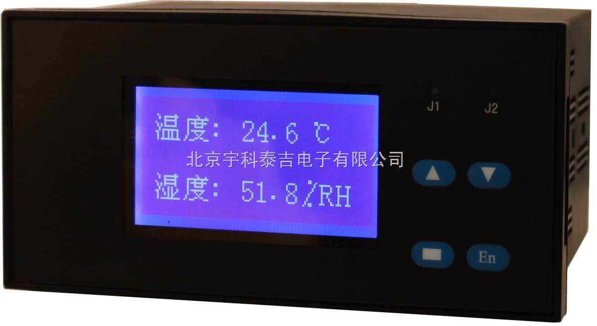 智能双通道温度测控仪