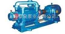 两级水环式真空泵