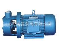 W型旋涡泵(直联式)