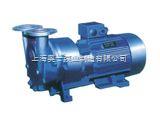 直联式水环式真空泵