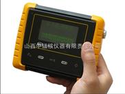 雙GM管劑量率儀(輻射巡測儀)
