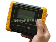 MPR200-01 剂量率仪(γ 射线巡测仪)