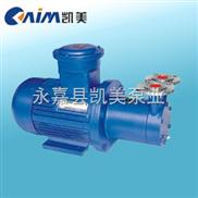 磁力驱动旋涡泵