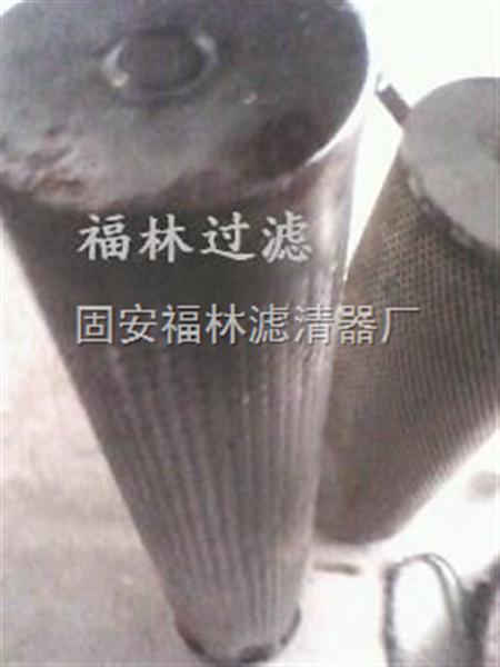 (福林)硅藻土滤芯30-150-207