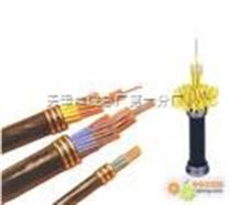 計算機通信電纜-DJYPV總屏價格