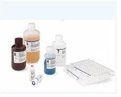 人皮膚T細胞虜獲趨化因子ELISA試劑盒CTACK/CCL27ELISA試劑盒說明書