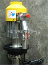 耐腐蚀防爆油桶泵