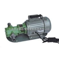 WB齿轮油泵