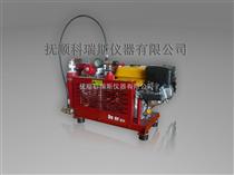 WG20-33呼吸威廉希尔充气泵