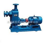 ZW污水泵,杂质泵