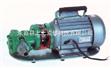 WCB手提式不锈钢齿轮油泵,WCB手提式不锈钢齿轮油泵厂家,WCB手提式不锈钢齿轮油泵价格