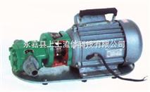 WCB手提式不鏽鋼齒輪油泵,WCB手提式不鏽鋼齒輪油泵廠家,WCB手提式不鏽鋼齒輪油泵價格