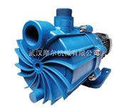 进口美国FTI耐腐蚀支持干运转自吸塑料磁力泵SP系列