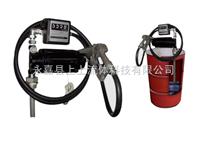 防爆计量油桶泵,防爆计量油桶泵厂家,防爆计量油桶泵价格