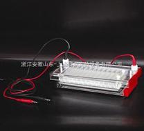 DYCP-44N快速凝膠電泳儀價格
