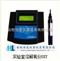 实验室溶解氧仪OXY5401B-H型