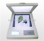 活体叶面积测定仪/激光叶面积仪/叶面积扫描仪