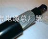 ZR-DJYPVP22电缆,天津ZR-DJYPVP22电缆