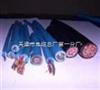 综合纽绞铁路信号电缆 PTYA23 42芯