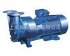 SKA直聯水環式真空泵