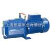 EQPS小型自吸喷射泵