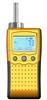 WAT80泵吸式氢气检测仪