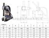 YT00081标准型手动压力机