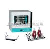 美国labnet ProtBot 12S豪华型分子杂交系统H1200-SA-230V