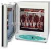 美国Labnet 311DS数字振荡培养箱I-5311-DS-230V